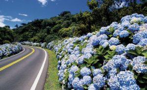 estrada-gramado1-670x412