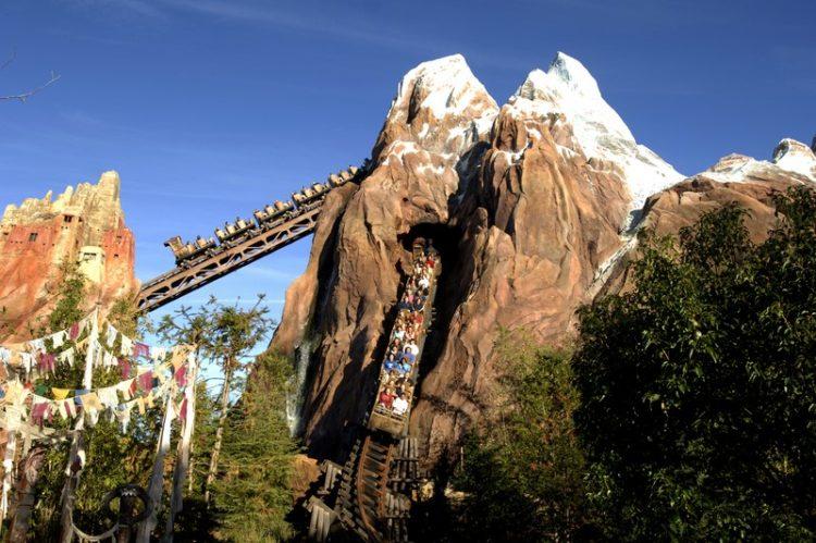 A montanha-russa Expedition Everest é a atração mais radical do Animal Kingdom. Durante o trajeto, os aventureiros percorrem partes escondidas do monte mais alto do mundo e encontram o Yeti, conhecido no Brasil como Abominável Homem das Neves