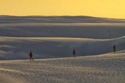 """Os Lençóis Maranhenses (MA) são uns dos muitos tesouros naturais do Nordeste brasileiro. As dunas do local são criadas pela força do vento, que muda a aparência da paisagem com frequência. Além disso, é possível encontrar algumas lagoas no meio do """"deserto"""""""