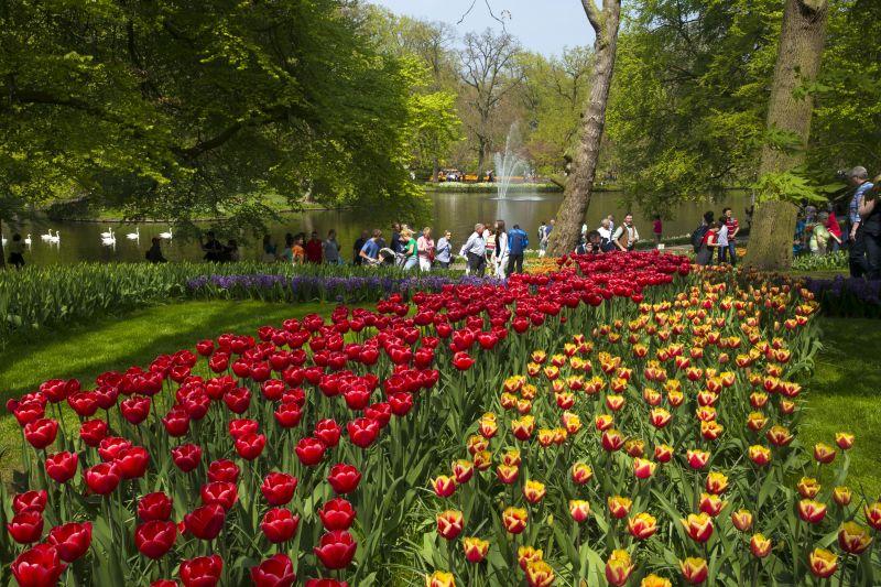 Keukenhof, parque de flores da Holanda