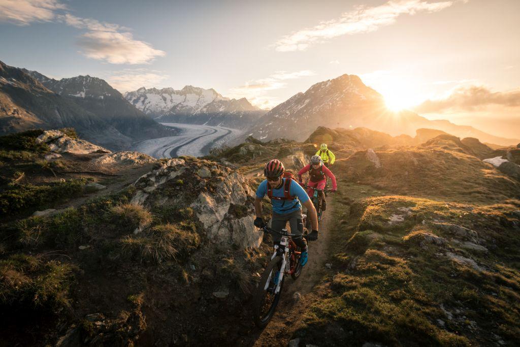 Bike Gruppe auf einem Trail bei Sonnenuntergangsstimmung