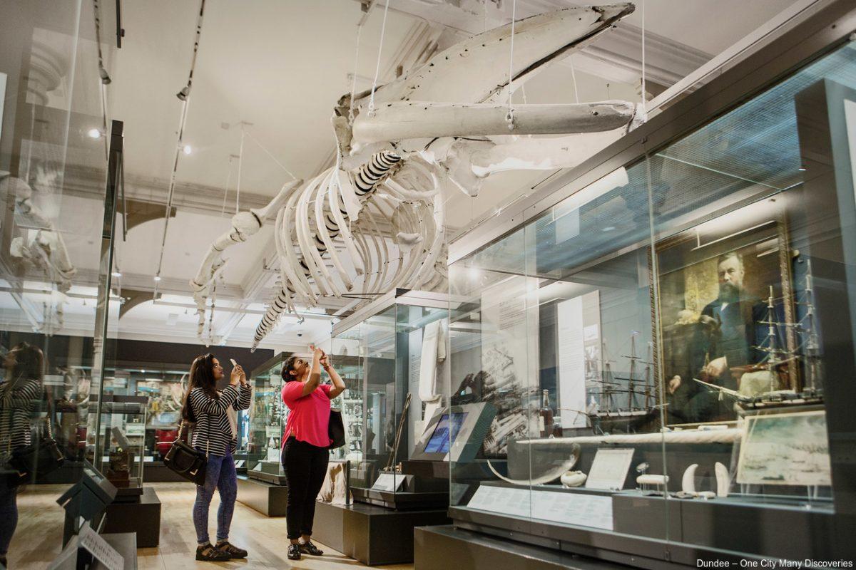 Um esqueleto de baleia é uma das atrações do McManus: Dundee's Art Gallery and Museum |Divulgação