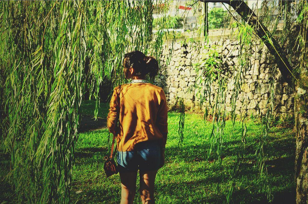 Jardins botânicos no Brasil são belas opções de passeio