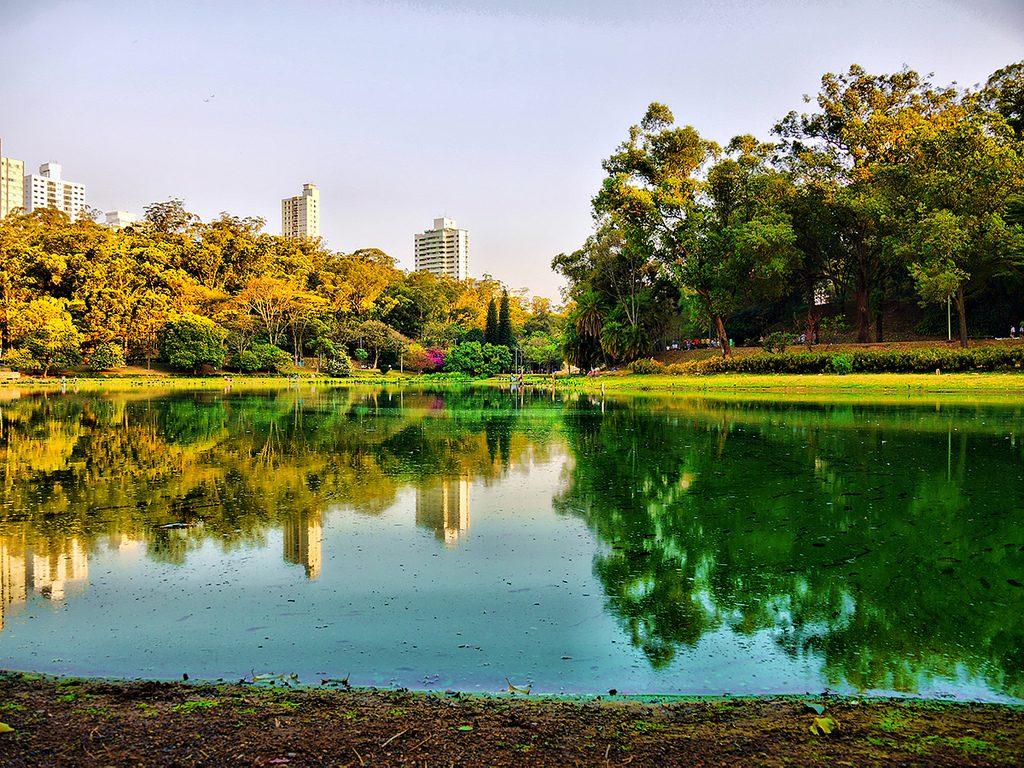 Lago no Parque da Aclimação | <a href=