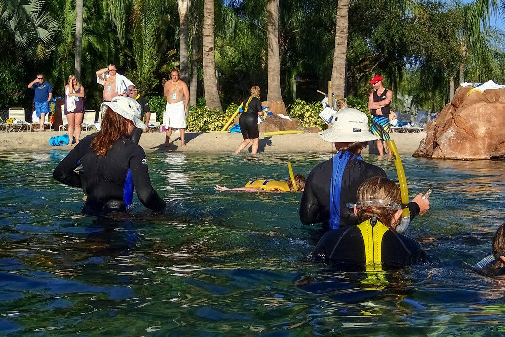 "Parque Discovery Cove nos Estados Unidos | <a href=""https://www.flickr.com/photos/myfrozenlife/16961324967/"">myfrozenlife</a> on <a href=""https://visualhunt.com/photos/travel/"">Visual hunt</a> / <a href=""http://creativecommons.org/licenses/by-nc-nd/2.0/""> CC BY-NC-ND</a>"