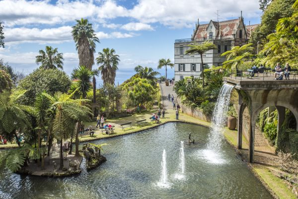 Jardim chama a atenção de turistas na Ilha da Madeira | Divulgação