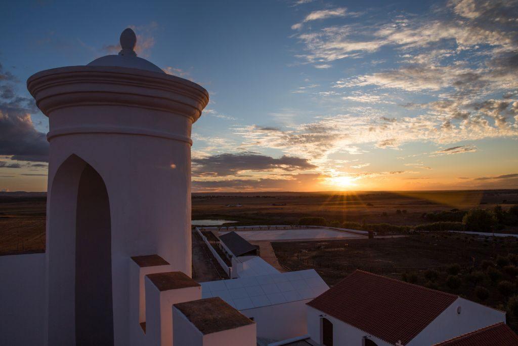 Vista da Torre de Palma | Divulgação