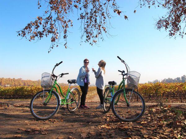 Passeio de bicicleta encanta os turistas | Divulgação