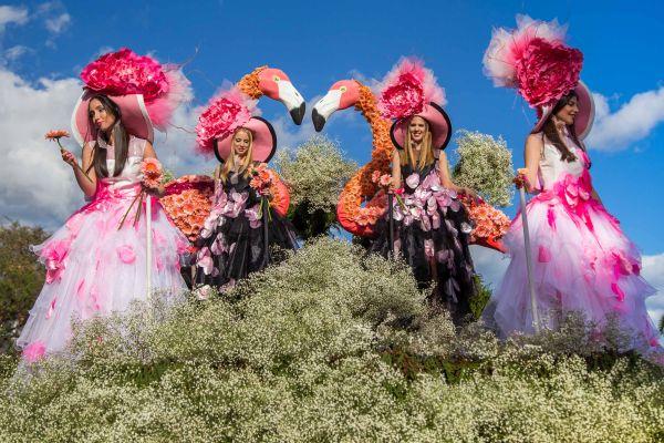 Festa da Flor, na Ilha da Madeira | Divulgação