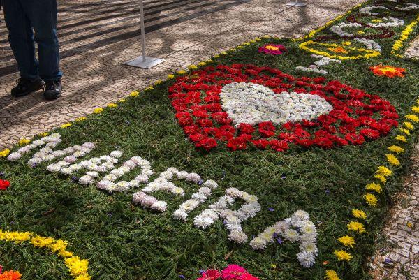 Tapetes florais durante a Festa da Flor, na Ilha da Madeira | Divulgação
