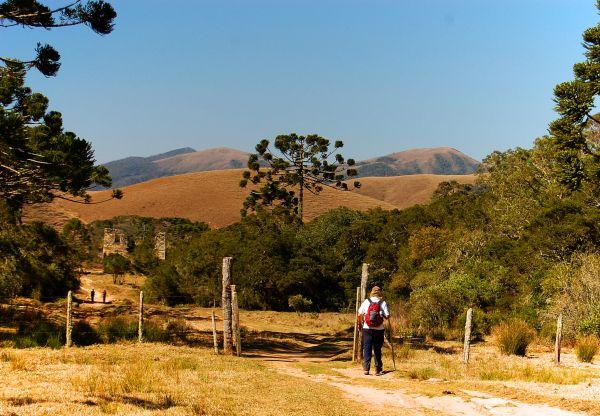 Vista do Parque Nacional da Serra da Bocaina   Divulgação