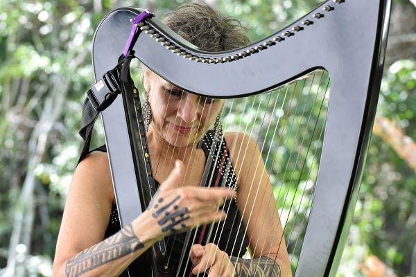 Instrumentos como harpa, violino e violão roubam a cena durante o festival   Divulgação