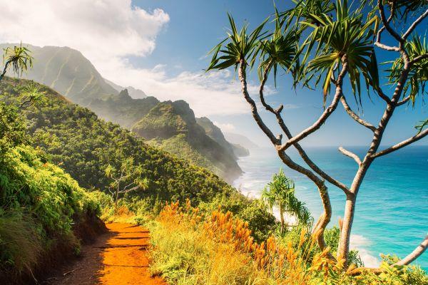 Vista da cidade de Kauai, no Havaí | Divulgação