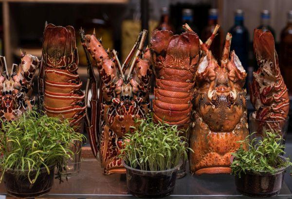 Outra atração gastronômica é experimentar uma lagosta durante a viagem| Divulgação