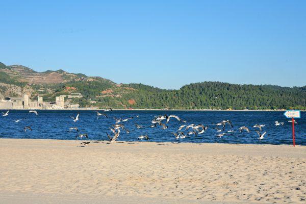 O litoral do Alentejo é um grande atrativo na região | Divulgação