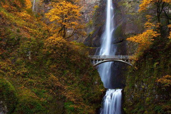 Multnomah Falls é uma boa opção para quem quer vistas de tirar o fôlego | Divulgação