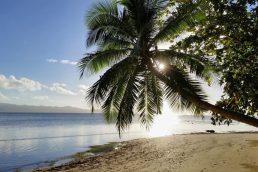 Fiji, Suva | Pixabay
