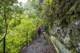 Ilha da Madeira flexibiliza restrições para turistas